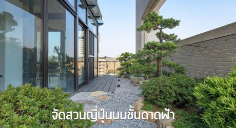 จัดสวนญี่ปุ่นบนดาดฟ้า