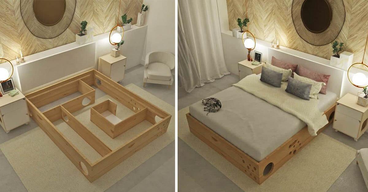 เตียงแมว