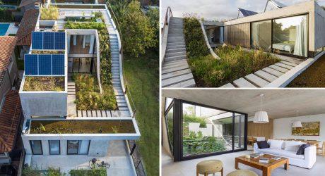 จัดสวนบ้านคอนกรีต
