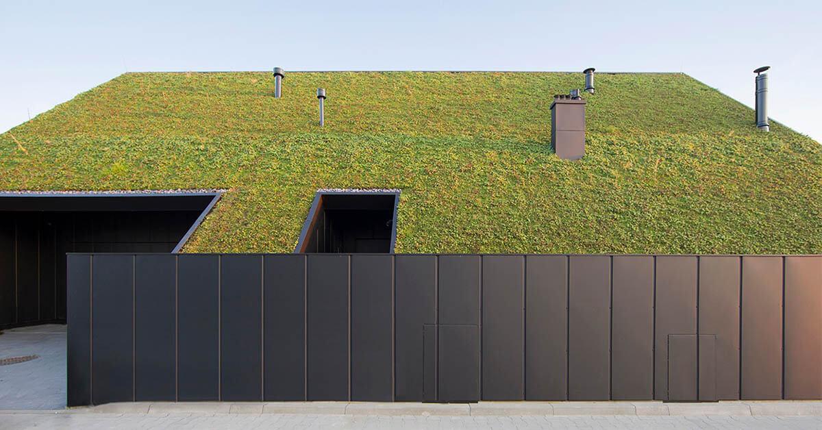 บ้านโมเดิร์นหลังคา Green roof