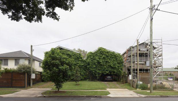 บ้านแฝดผนังไม้เลื้อย