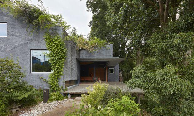 บ้านปูนเปลือยกลางธรรมชาติ